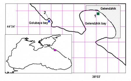 Расположение точек отбора проб в Геленджикской (1) и Голубой (2) бухтах.